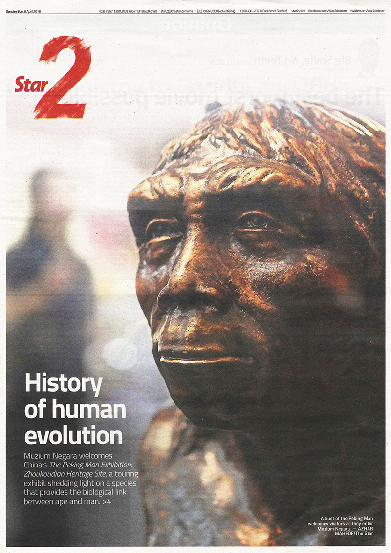 History of Human Evolution