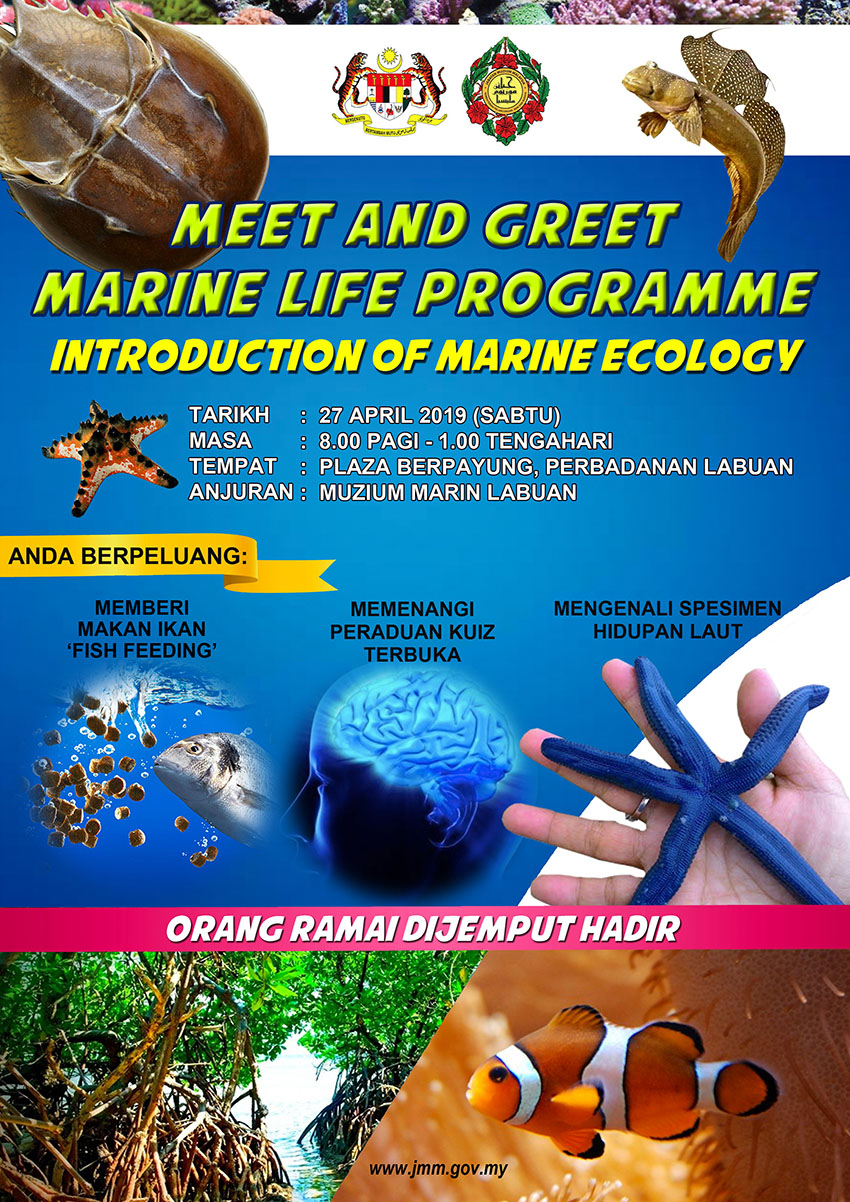 Meet And Greet Marine Life Programme